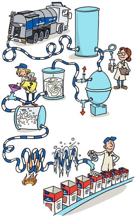 hur pastöriserar man mjölk