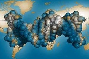 اشتباه بأول حالة وفاة ببكتيريا ايكولاي بأمريكا