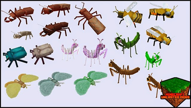 The Erebus Dimension of Arthropods Mod insects