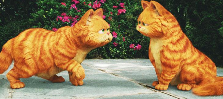Kumpulan Gambar Kucing Garfield Yang Menggemaskan