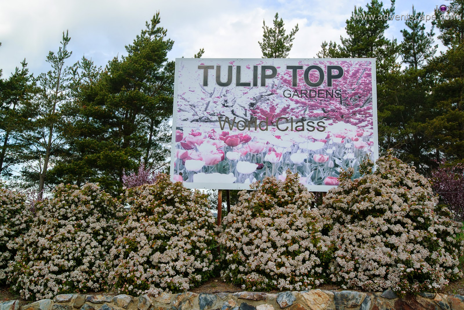 Philip Avellana, adventscape, iori, Tulip Top Gardens, garden, spring, NSW, New South Wales, Sutton, Old Federal Highway, Bywong, 2621, signage, sign