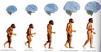 Estudo descobre como os humanos estão evoluindo