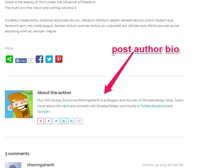 Tùy chỉnh author post dưới cuối mỗi bài viết
