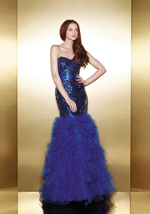 Love 16 Mermaid Prom Dresses by Enzoani 2013