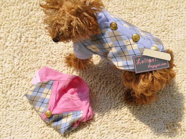 Lolipet.blogspot.com - The Online Pet Boutique LPC11060601