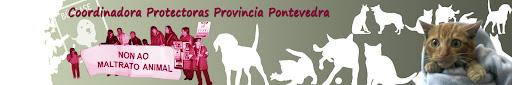 ASOCIACION COORDINADORA PROTECTORAS PROVINCIA PONTEVEDRA
