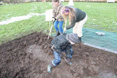 family digging in the Beningbrough Hall allotment