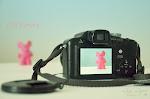 Mis proyectos fotográficos: