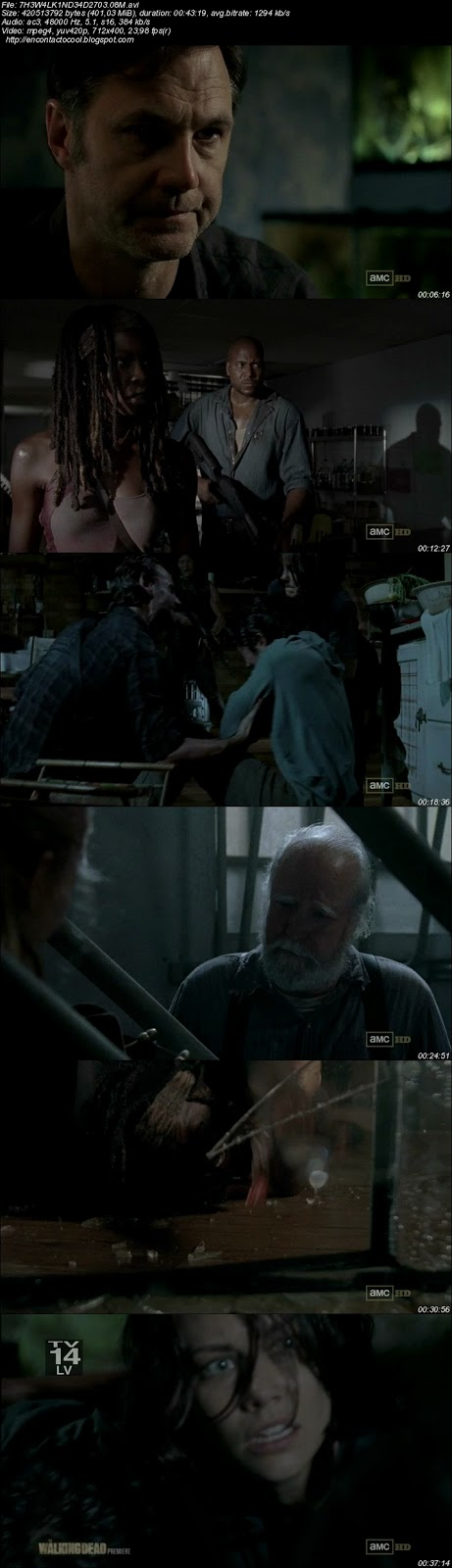 The walking dead 3x08