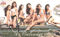 kingfisher calender girls 2013