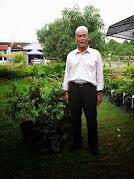 BUMI HIJAU NURSERY (002279488-D): Benih Kelapa Pandan Siam
