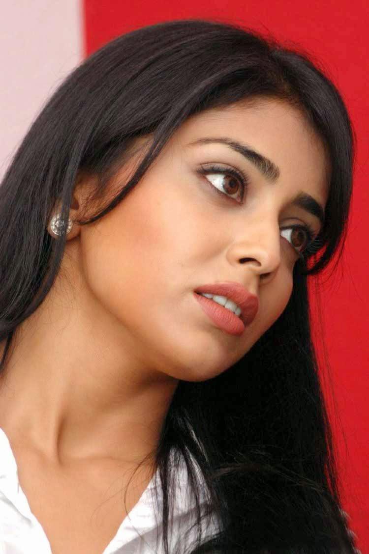 shriya saran hot collections   gallery solutions