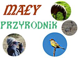 http://www.kreatywnymokiem.pl/2015/06/may-przyrodnik-czerwcowe-robaki-owady-i.html