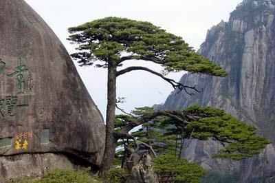 Mount Huangshan, China