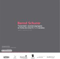 Bernd Schurer Transmisión vectorial segregada en forma de onda ( 1 x 4 canales)