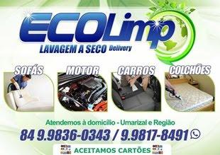 """ECOLIMP """"Lavagem a seco Delivery""""."""