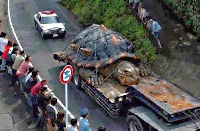 la tortuga mas grande del mundo
