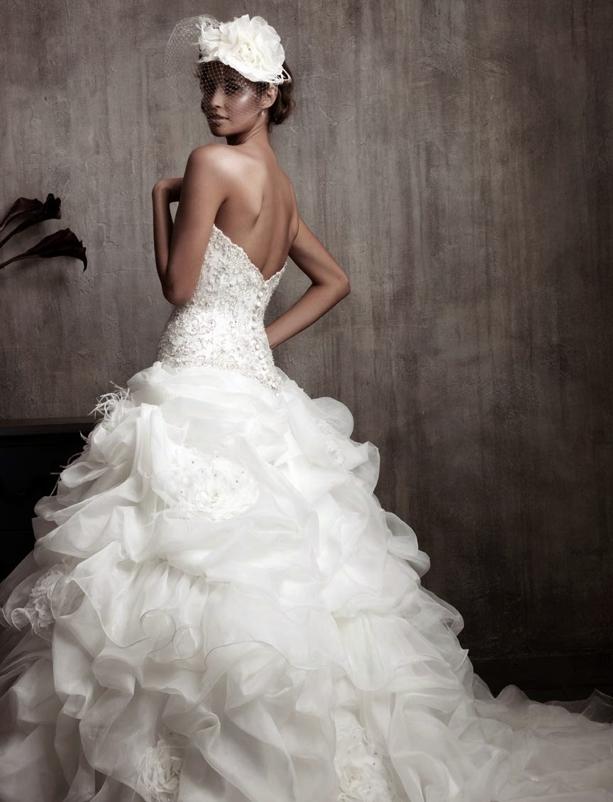 Expensive Ball Gown Wedding Dresses Long Trains Photos HD Design