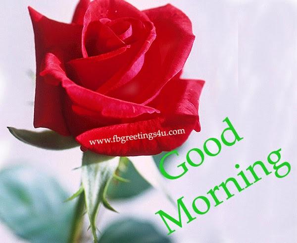 Good Morning Images facebook, Good Morning scraps, ecards, Graphics ...