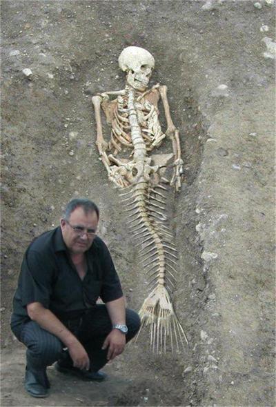 директор исторического музея и скелет русалки