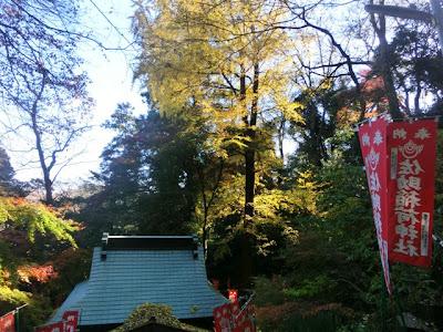 佐助稲荷神社の紅葉
