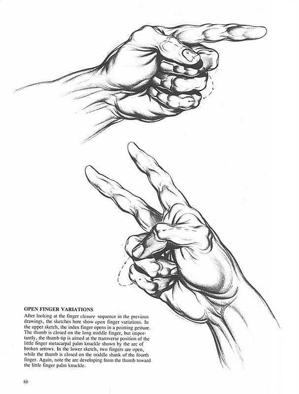 Anatomie Artistica Burne Hogarth Gheorghe Ghitescu Burne Hogarth