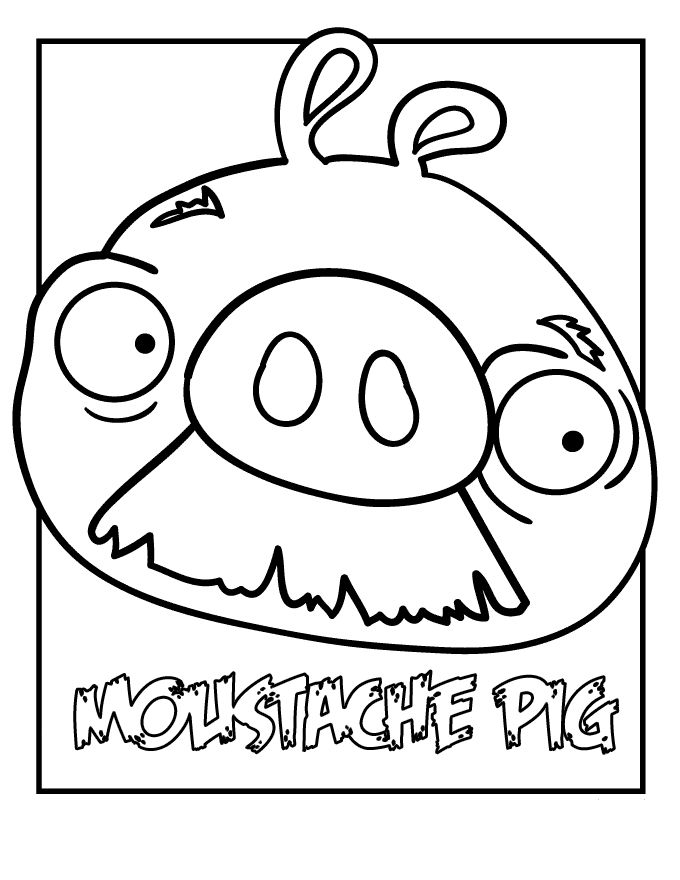 Cute PIG from angry birds space
