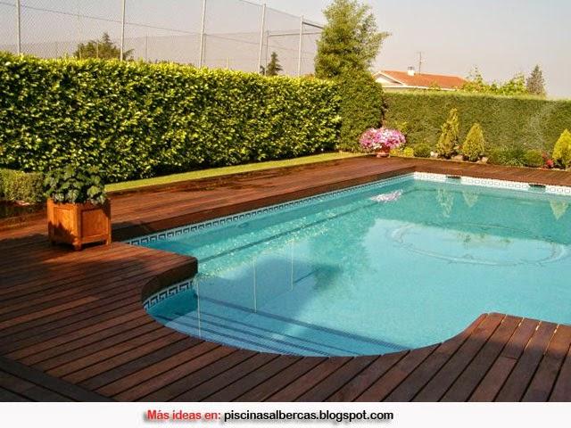 Piscinas con bordes de madera piscinas y albercas fotos for Jardines alrededor de piscinas