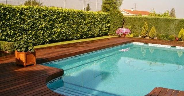 Piscinas con bordes de madera piscinas y albercas fotos - Adornos para piscinas ...