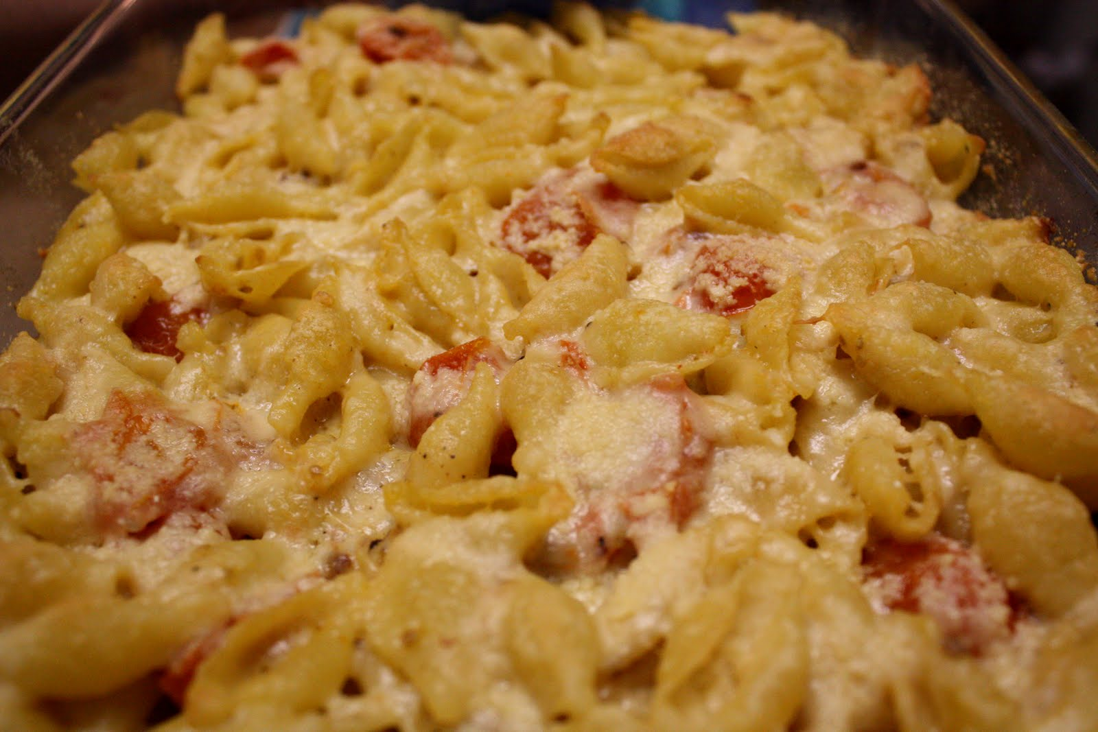 Baked Shell Pasta w/Cherry Tomatoes (gluten-free option, contains ...