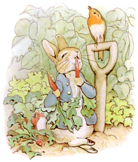 Follow the Piper BEATRIX POTTER and PETER RABBIT