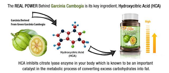 Garcinia Cambogia buy online