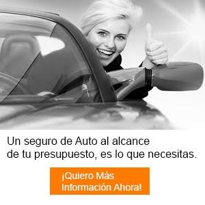 SEGURO DE AUTO ASEQUIBLE