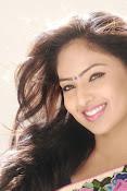 Nikesha Patel latest sizzling portfolio-thumbnail-9