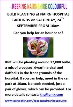 Bulb Planting