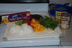 Ingredients for Vegetable Lo Mein
