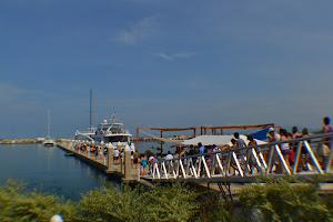 Marina Pez Vela Boat Rentals
