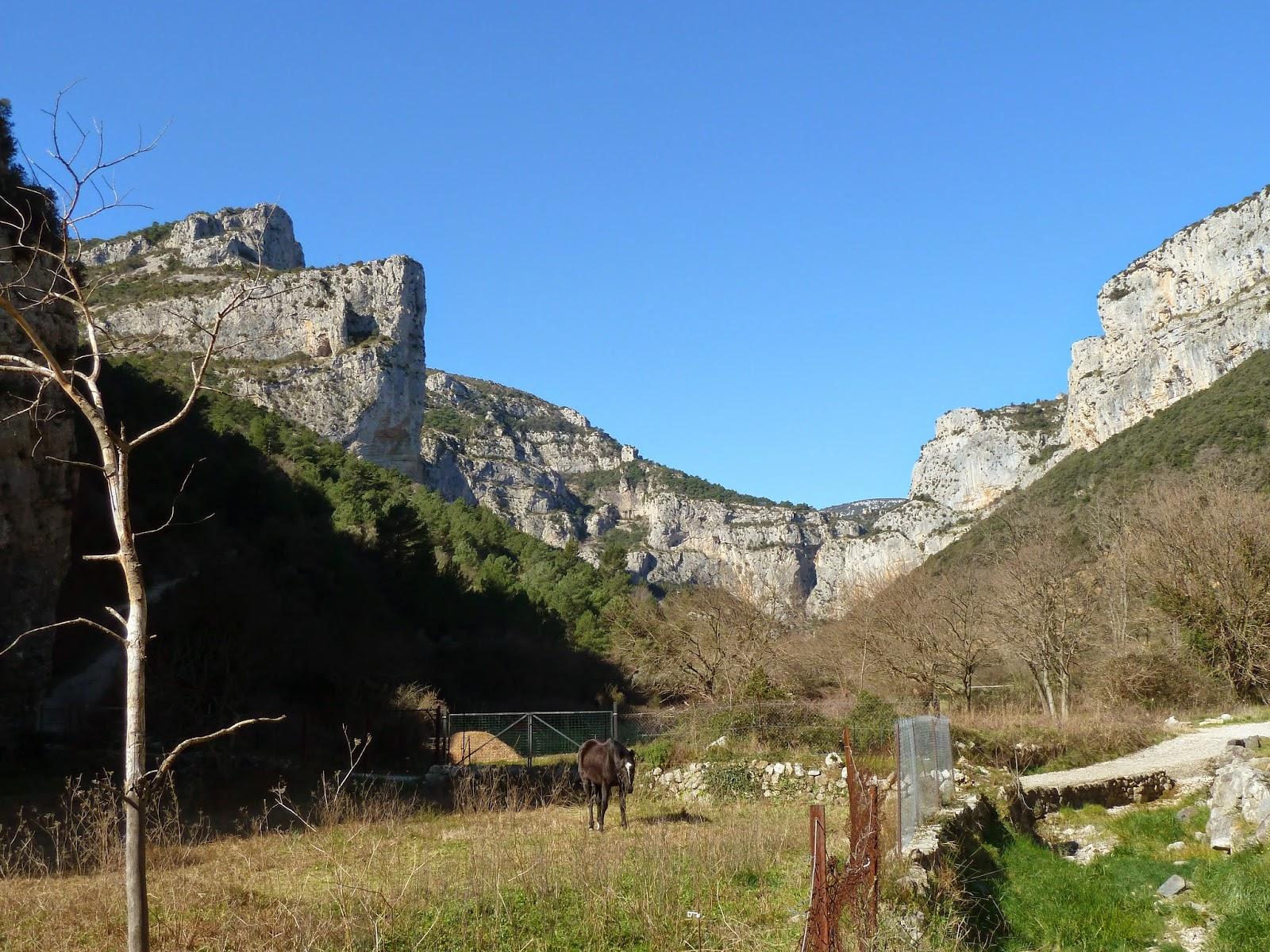 [CR] GTH34, de Bédarieux à Montpellier. Du 03 au 07 mars 2015. P1060991