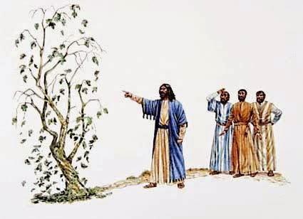 A Monoergistic Interpretation Of Jesus Cursing The Fig Tee Matthew