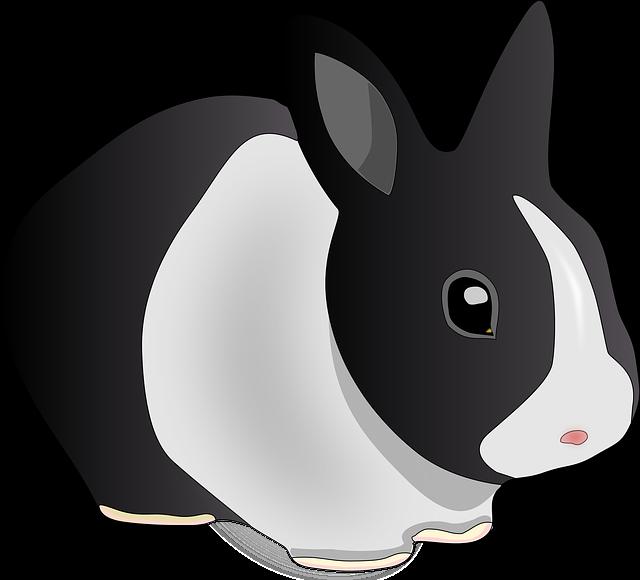gambar kartun kelinci