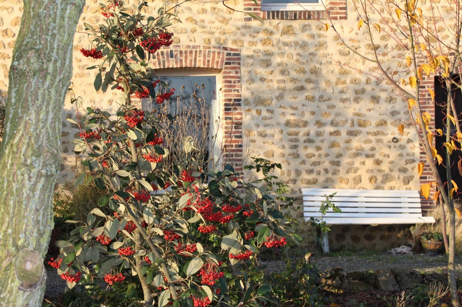 Chambres d 39 h tes au jardin des violettes remise en tat plate bande de la terrasse - Nettoyage terrasse jardin le havre ...