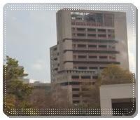 rumah sakit kanker amerika anderson