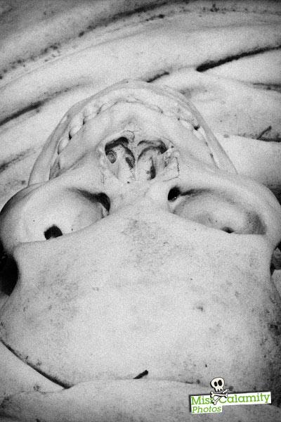 Memento mori: las clases de anatomía del doctor Farreras i Framis ...