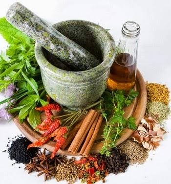 5 Jenis Tanaman Herbal Rumahan Dengan Segudang Manfaat Bagi Kesehatan Tubuh
