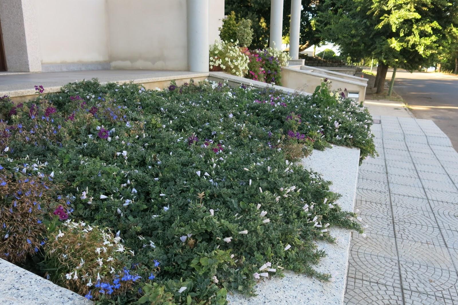Giardini in gallura giardinetto pubblico a luras for Lantana strisciante