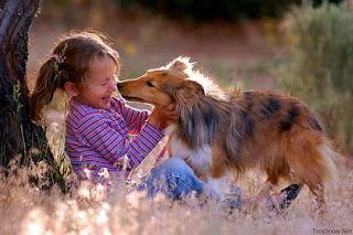cao+crianca Idade canina x Idade humana