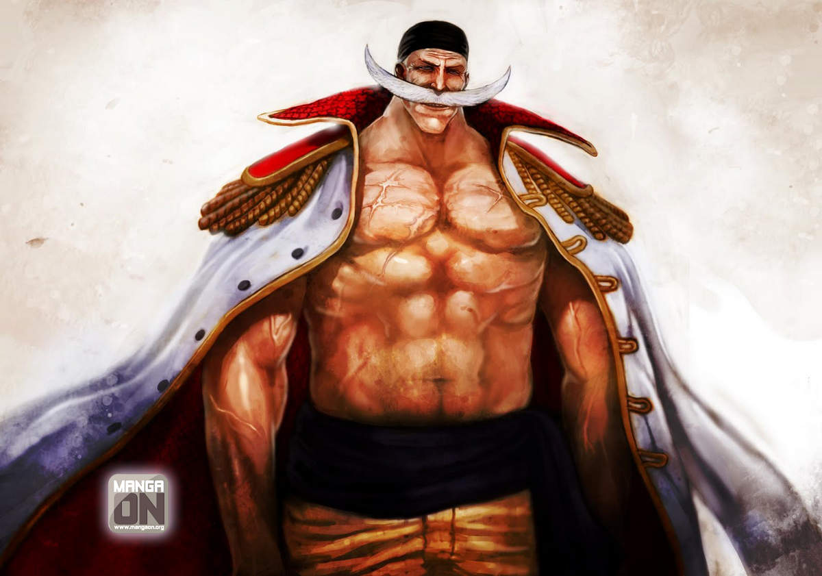 One Piece HD & Widescreen Wallpaper 0.372106109894934