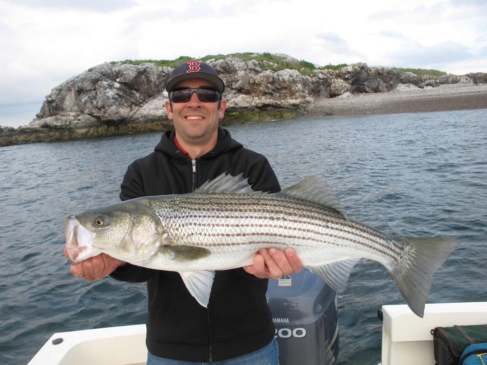 Boston fly fishing and report may 2012 for Boston harbor fishing report