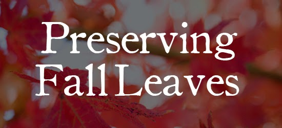 Preserving Fall Leaves