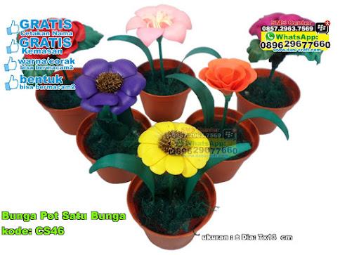 Bunga Pot Satu Bunga